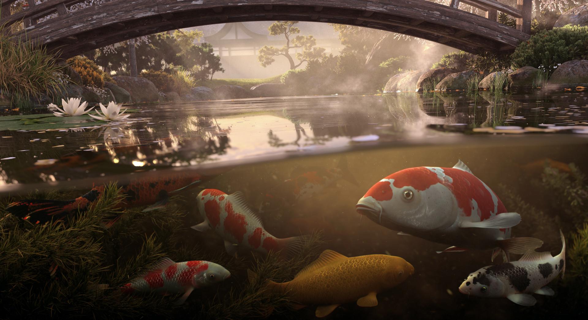 Koi pond 3d environment